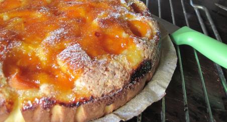 Lagani kolač od kajsija/marelica - slika