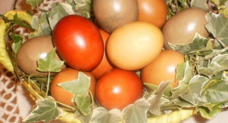 Uskrsna jaja - PROČITAJTE