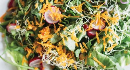 Povrtna salata - PROČITAJTE